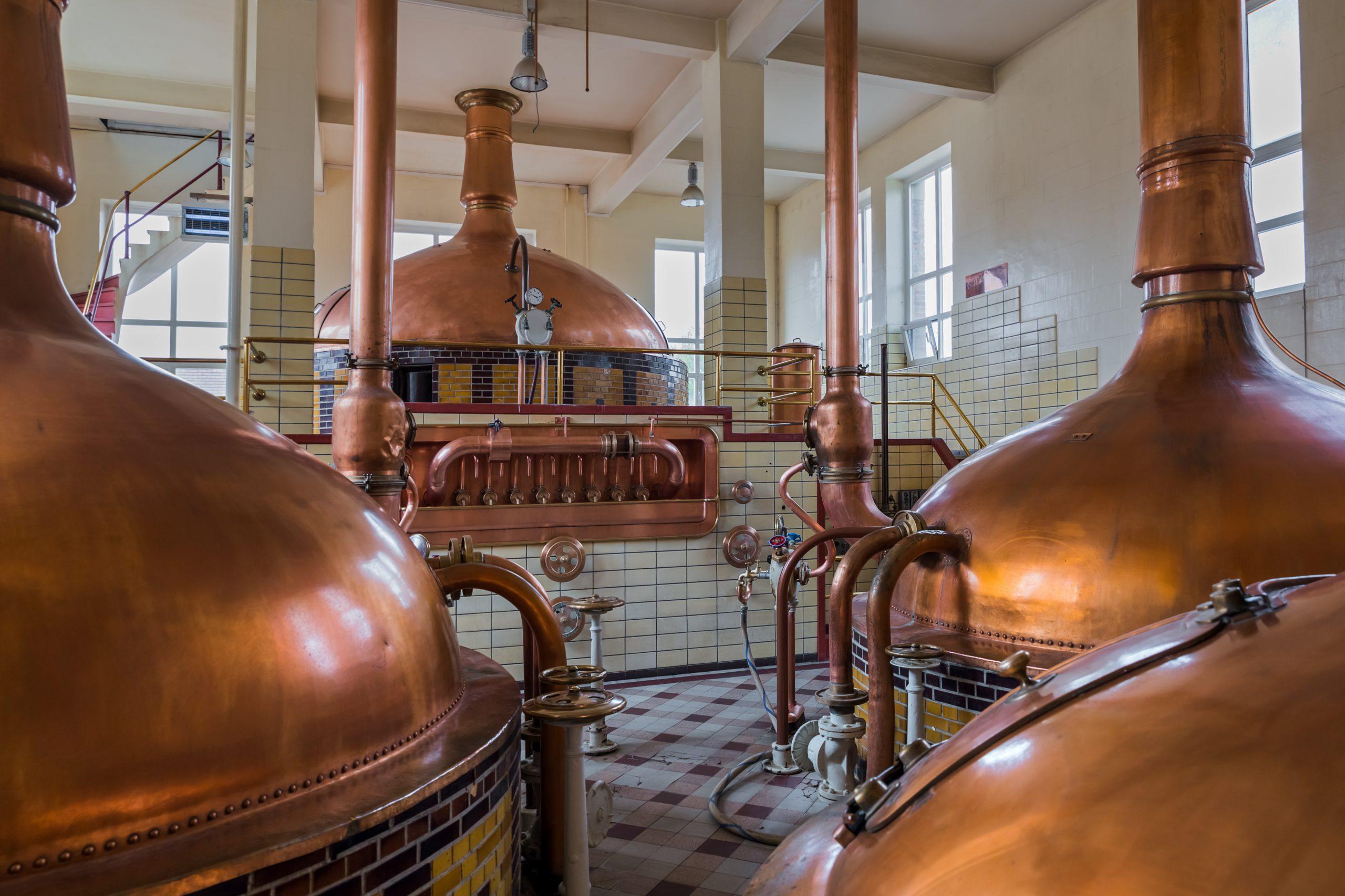 Mehrere kupferne Bierkessel in der Halle einer traditionellen Brauerei.